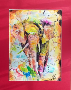 Elefant-Color1-1